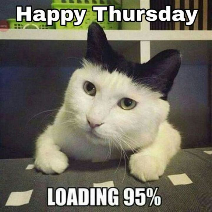 """Happy Thursday. Loading 95%."""