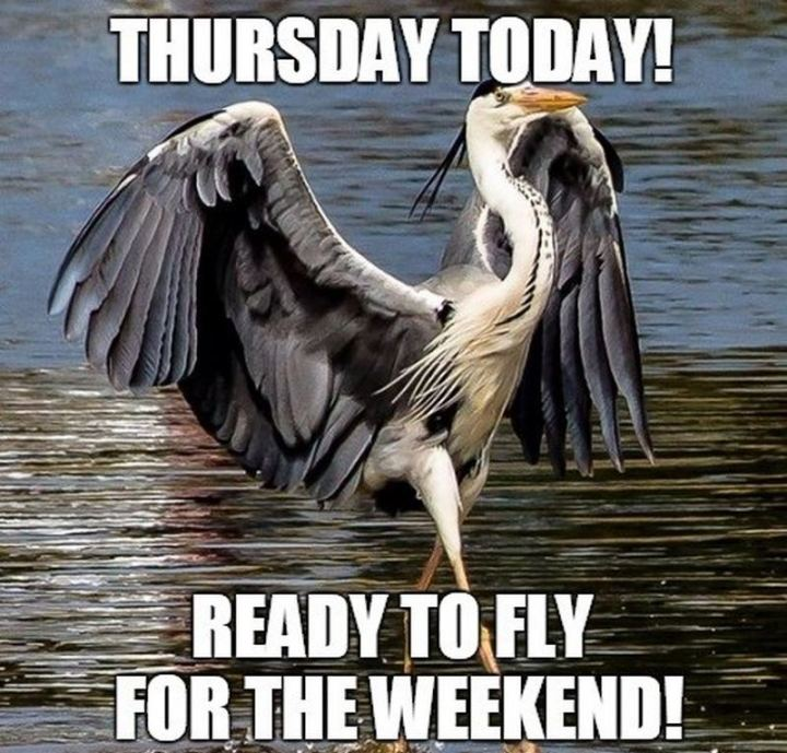 """Thursday today! Ready to fly for the weekend!"""