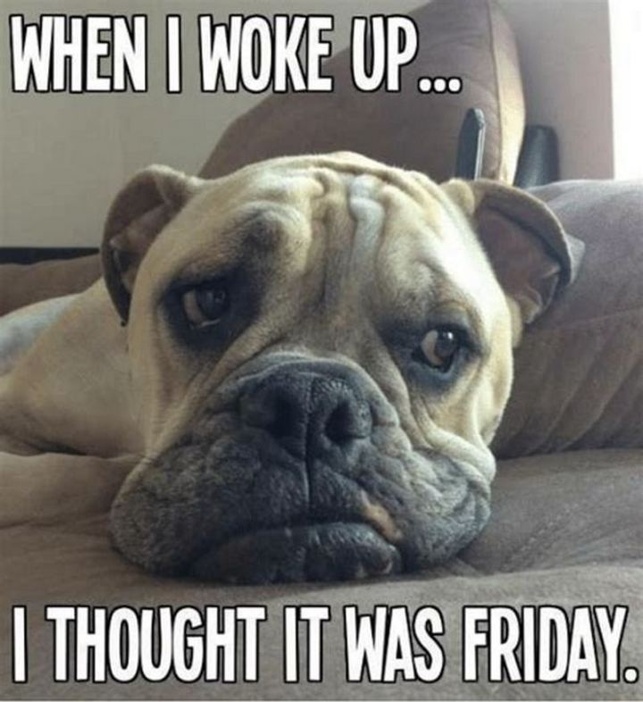 """When I woke up...I thought it was Friday."""
