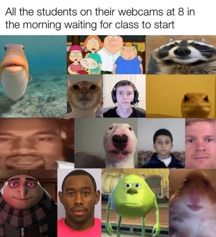"""53 Coronavirus Memes - """"All the students on their webcams at 8 in the morning waiting for class to start."""""""