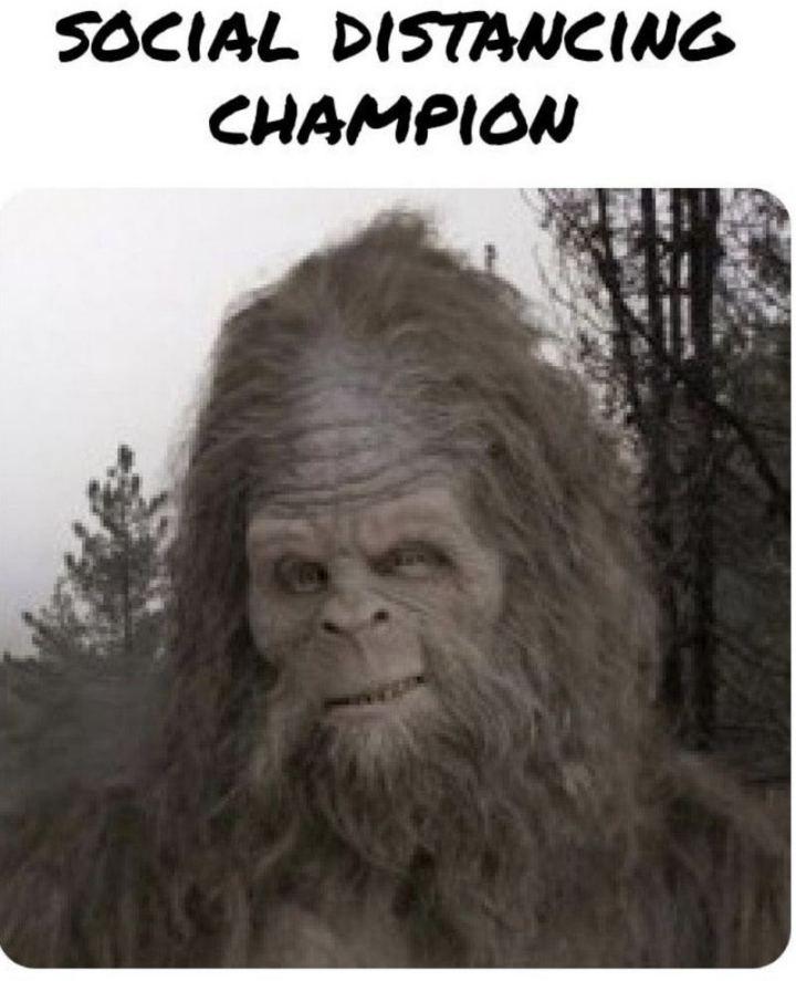 "53 Coronavirus Memes - ""Social distancing champion."""