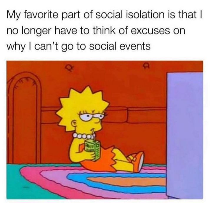 "75 Introvert Memes - ""My favorite part of social isolation is that I no longer have to think of excuses on why I can't go to social events."""