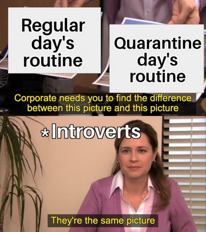 "75 Introvert Memes - ""Corporate needs you to find the difference between this picture (regular day's routine) and this picture (quarantine day's routine). Introverts: They're the same picture."""