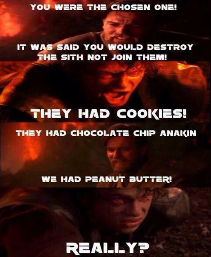 """61 Star Wars Memes - """"You were the chosen one! It was said you would destroy the Sith not join them! They had cookies! They had chocolate chip Anakin. We had peanut butter! Really?"""""""