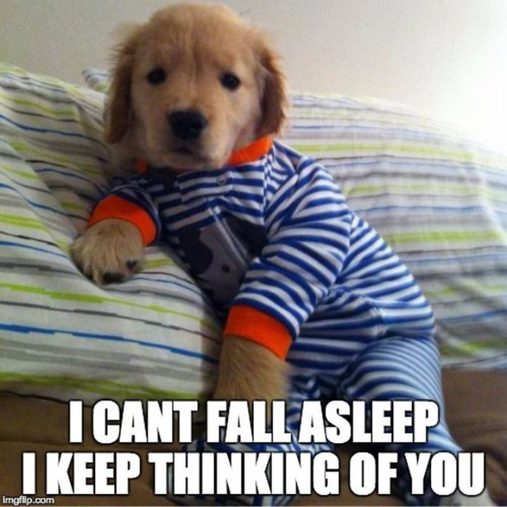 "77 ""Thinking of You"" Memes - ""I can't fall asleep. I keep thinking of you."""