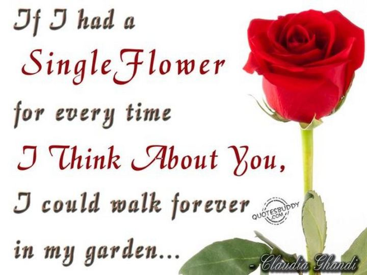 "77 ""Thinking of You"" Memes - ""If I had a single flower for every time I think about you, I could walk forever in my garden."""