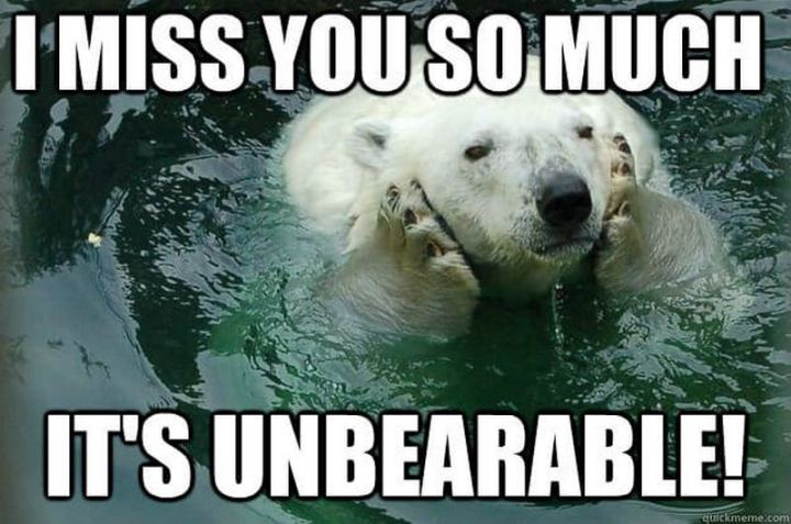 "77 ""Thinking of You"" Memes - ""I miss you so much it's unbearable."""