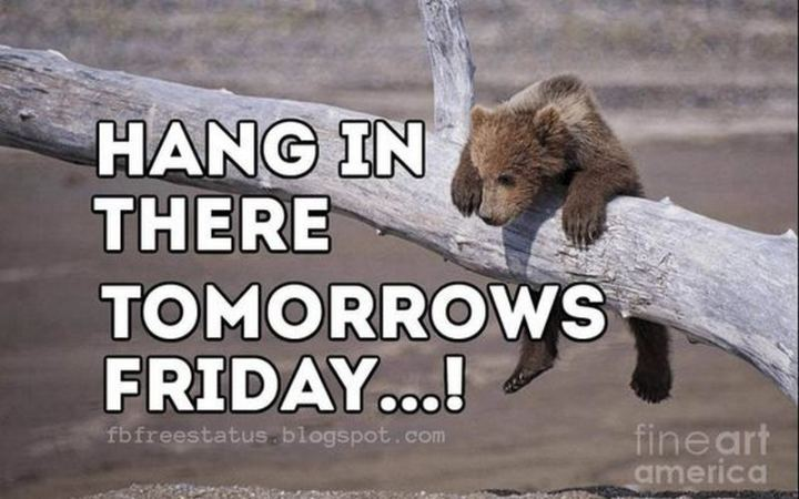 "55 ""Almost Friday"" Memes - ""Hang in there, tomorrow's Friday...!"