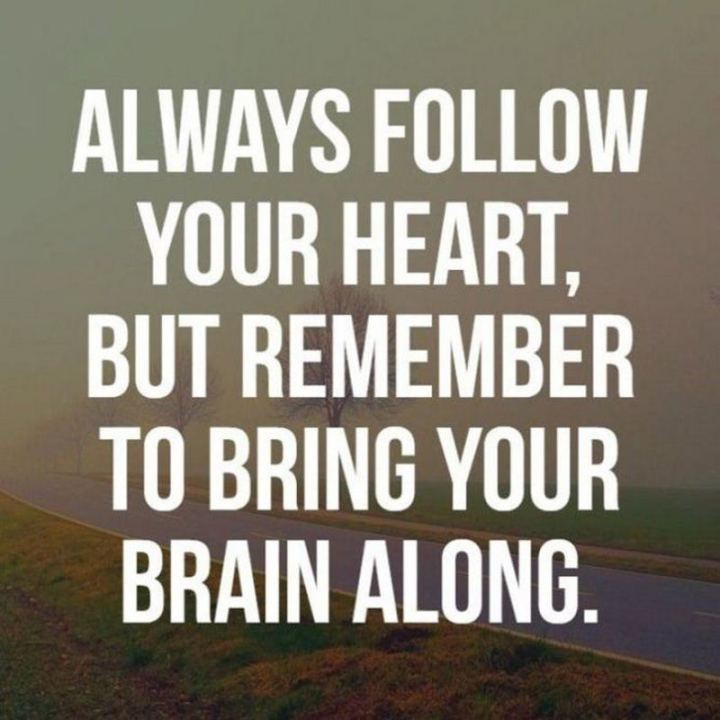 """53 Funny Love Quotes - """"Always follow your heart, but remember to bring your brain along!"""" - Anonymous"""