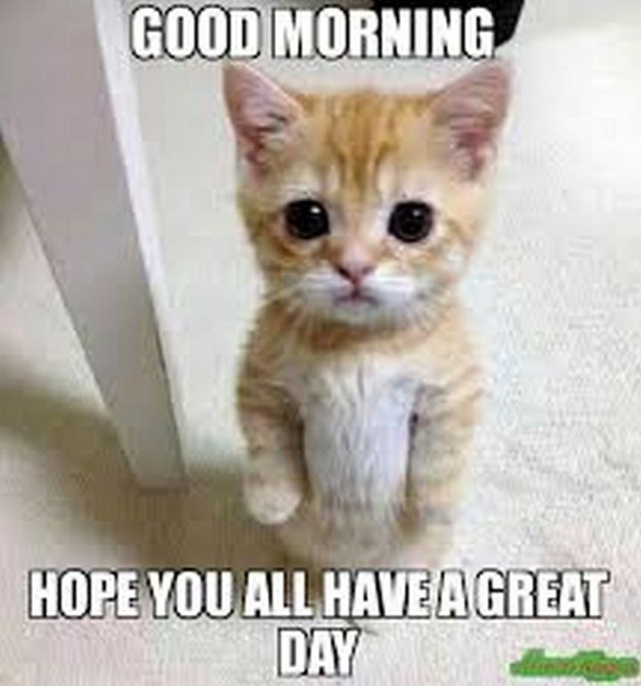 "101 ""Have a Great Day"" Memes - ""Good morning. Hope you all have a great day."""