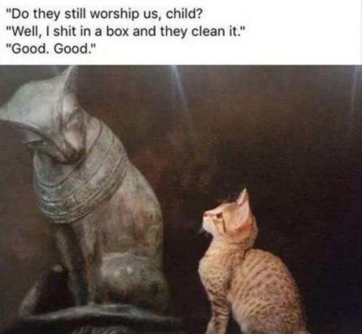 "55 Funny History Memes - ""Do they still worship us, child? Well, I $#!t in a box and they clean it. Good. Good."""