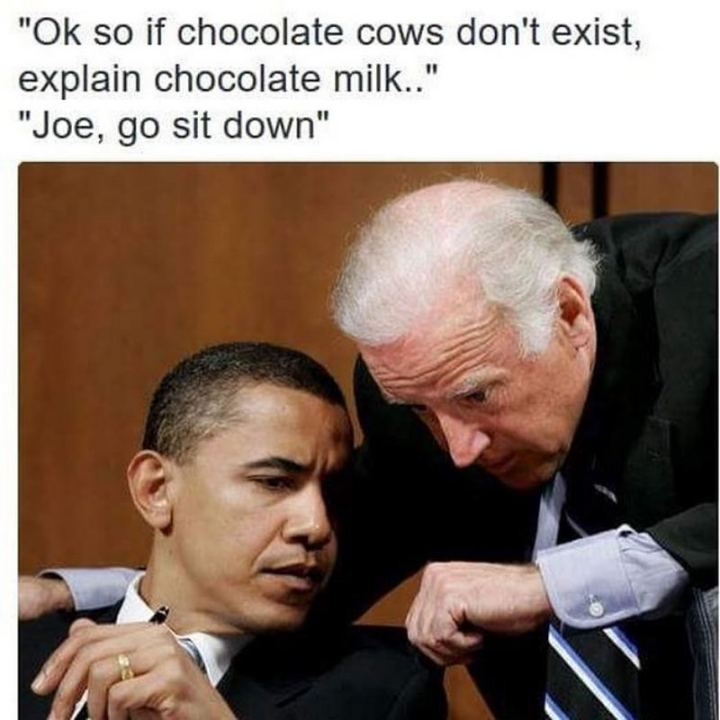 "51 Joe Biden Memes - ""Ok so if chocolate cows don't exist, explain chocolate milk...Joe, go sit down."""