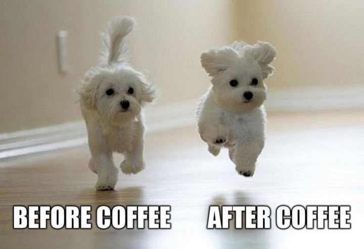 """Before coffee VS After coffee."""