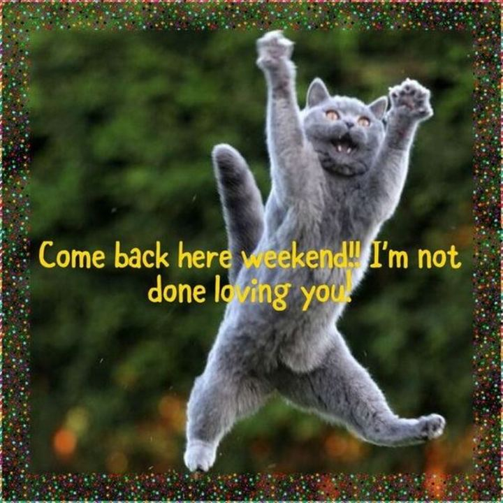 """Come back here weekend!! I""m not done loving you!"""