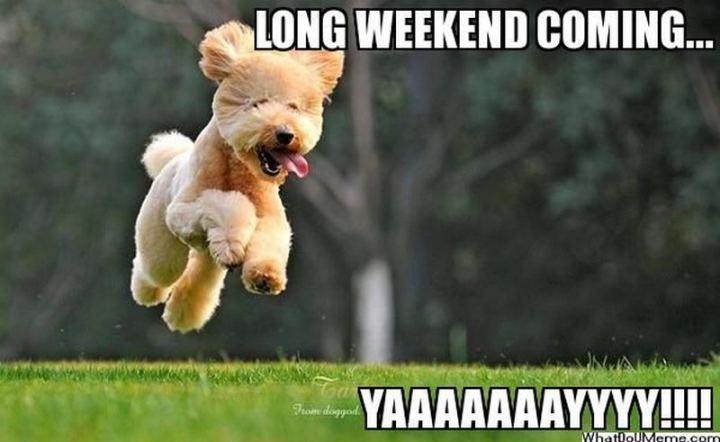 """""""Long weekend coming...yay!!!!"""""""