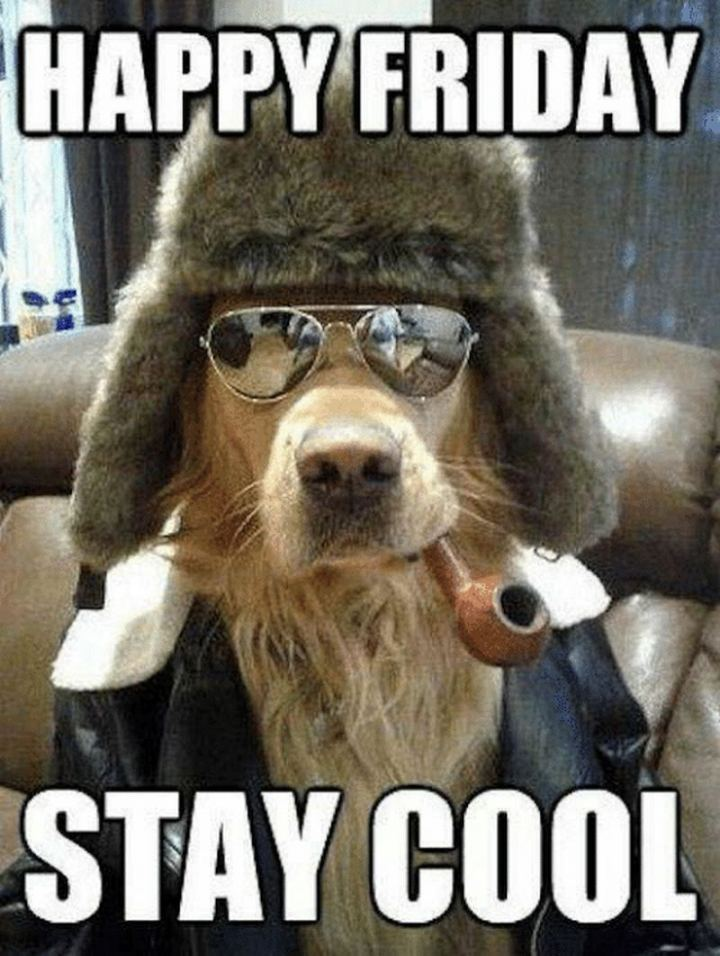 """Happy Friday. Stay cool."""