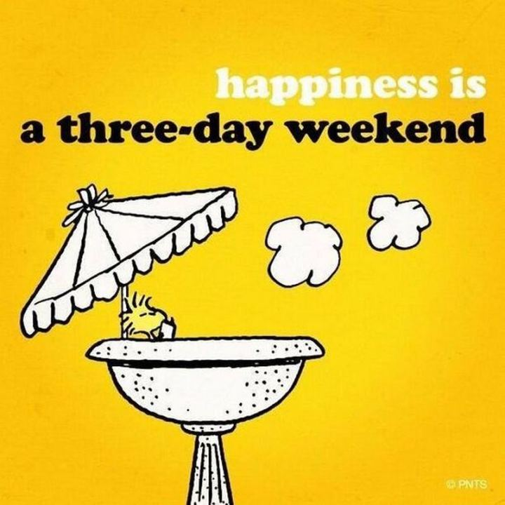 """Happiness is a three-day weekend."""