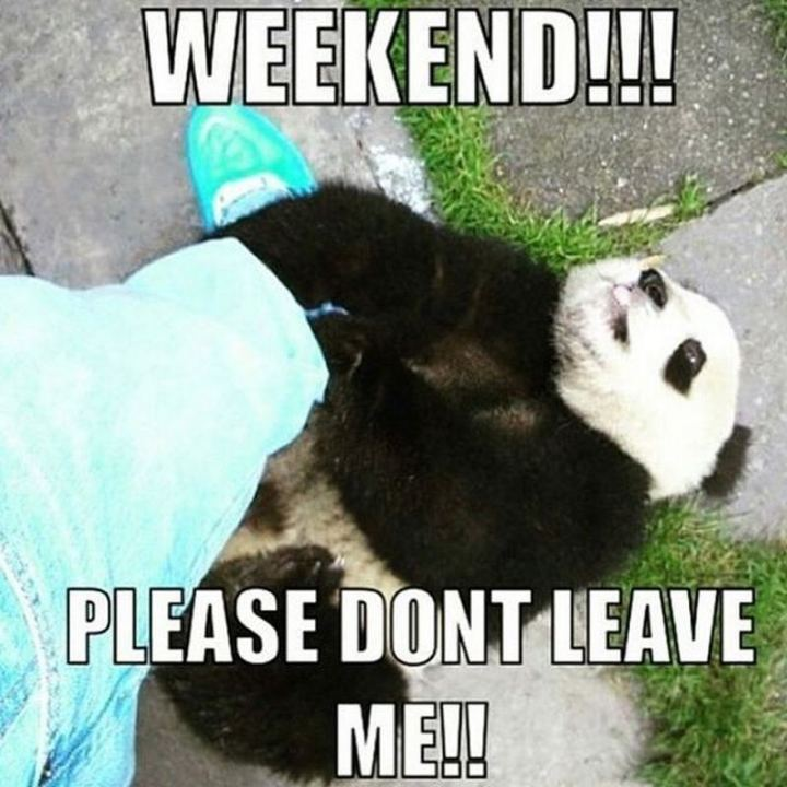 """Weekend!!! Please don't leave me!!"""