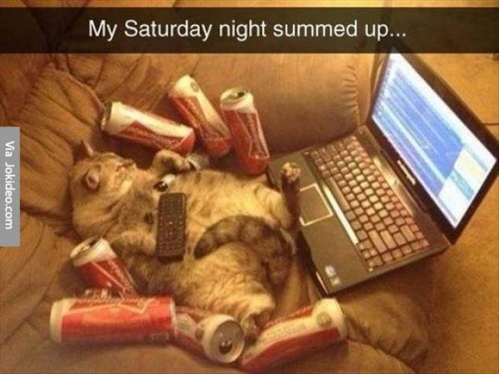 """My Saturday night summed up..."""