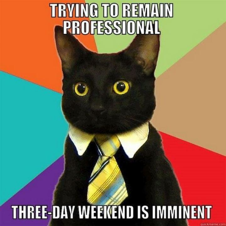 """Trying to remain professional. Three-day weekend is imminent."""