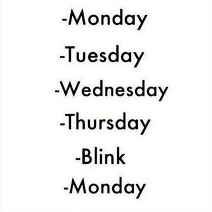"""Monday. Tuesday. Wednesday. Thursday. Blink. Monday."""