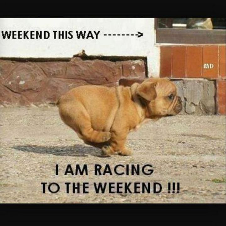 """I am racing to the weekend!!!"""