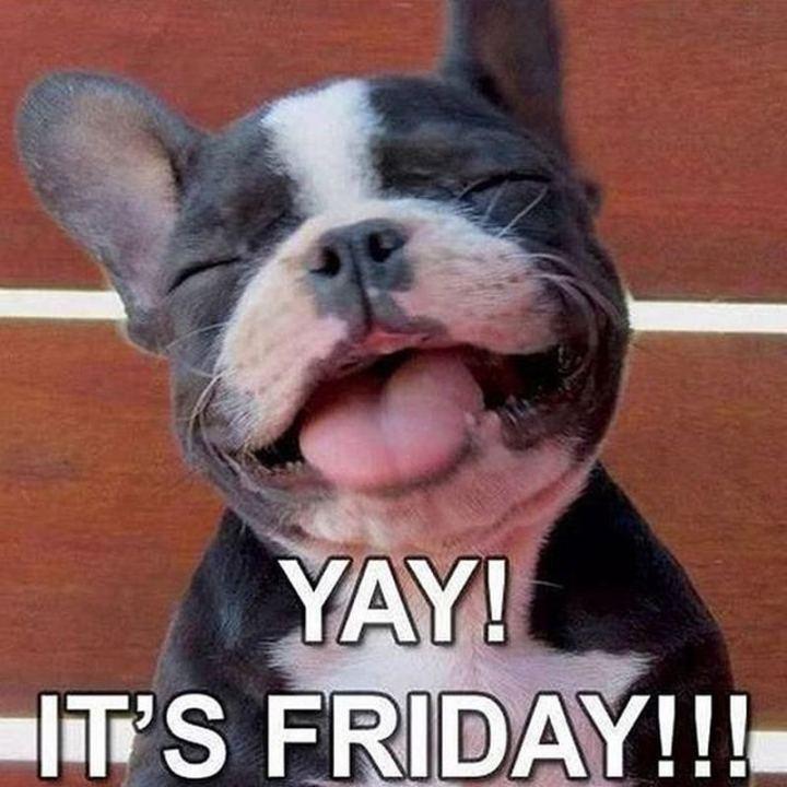 """""""Yay! It's Friday."""""""