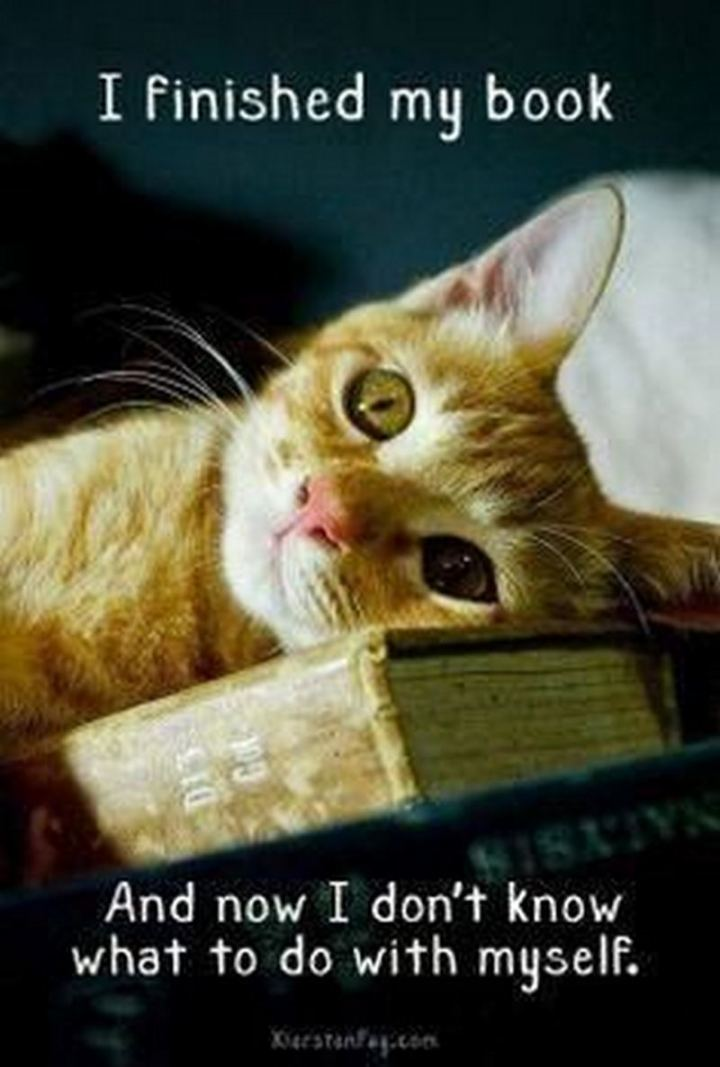 """""""I finished my book. And now I don't know what to do with myself."""""""