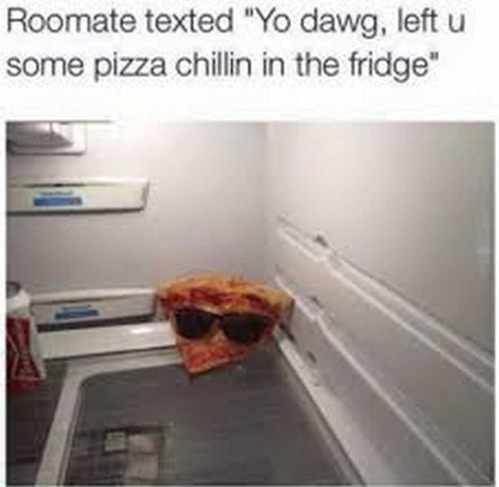 """Roommate texted, 'Yo dog, left u some pizza chilling in the fridge."""