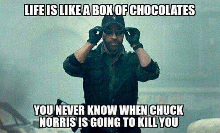 """Life is like a box of chocolates, you never know when Chuck Norris is going to kill you."""