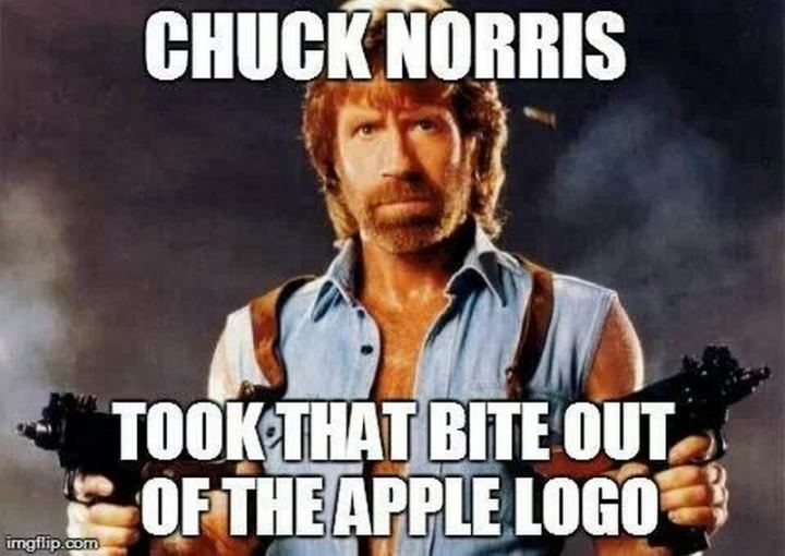 """Chuck Norris took that bite out of the Apple logo."""