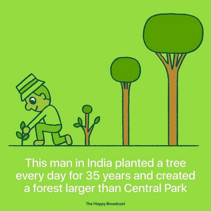 """This man in India planted a tree every day for 35 years and created a forest larger than Central Park."""