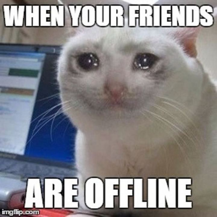 """When your friends are offline."""