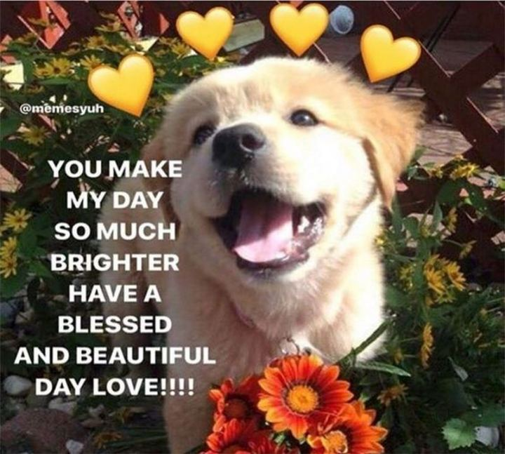 """47 Love and Affection Memes - """"You make my day so much brighter. Have a blessed and beautiful day love!!!!"""""""