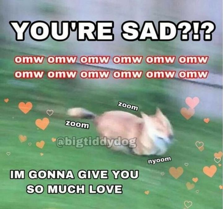 """""""You're sad?!? I'm gonna give you so much love."""""""