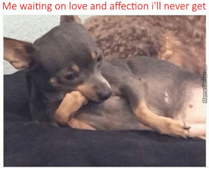 """""""Me waiting on love and affection I'll never get."""""""