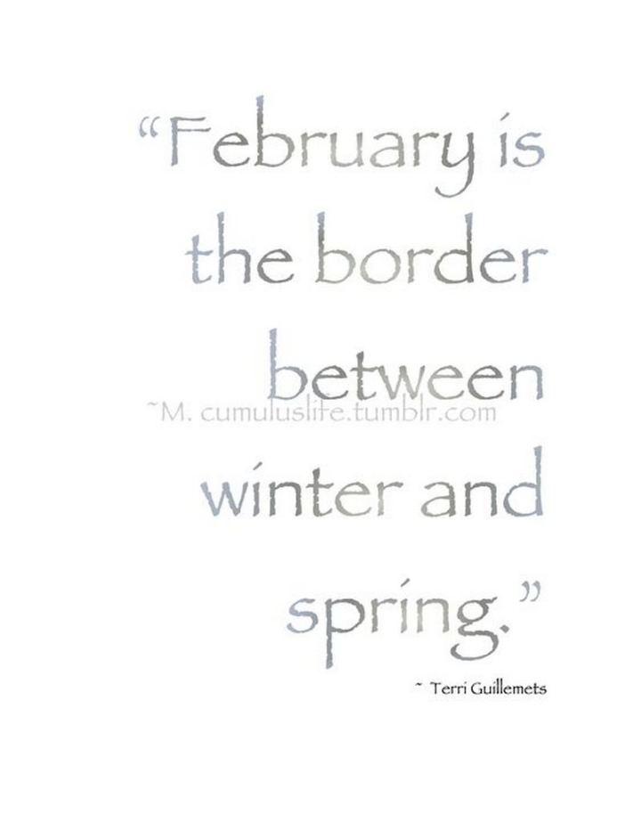 """""""February is the border between winter and spring."""" - Terri Guillemets"""