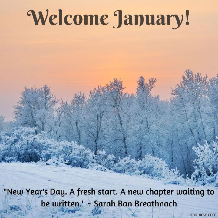 """Welcome, January! New Year's Day. A fresh start. A new chapter waiting to be written."" - Sarah Ban Breathnach"
