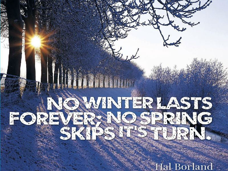 """No winter lasts forever; no spring skips its turn."" - Hal Borland"
