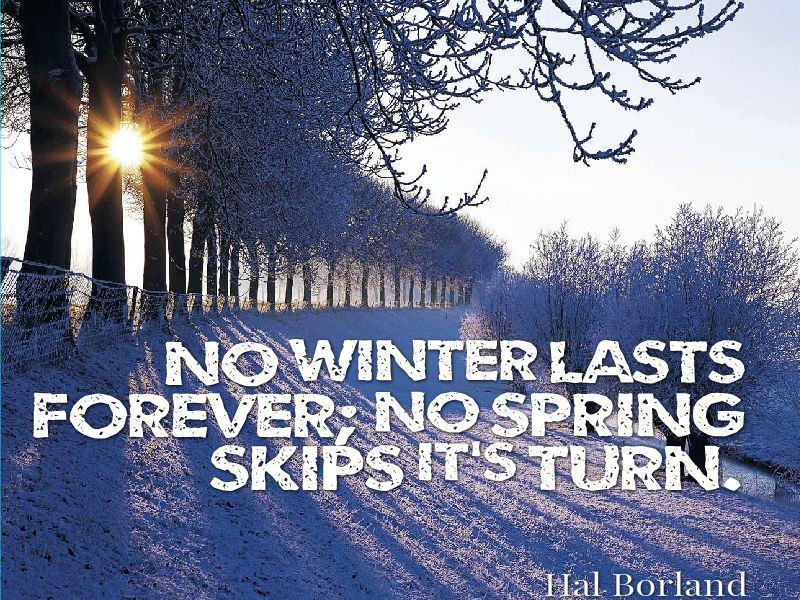 """No winter lasts forever; no spring skips its turn."" - Hal Borland"