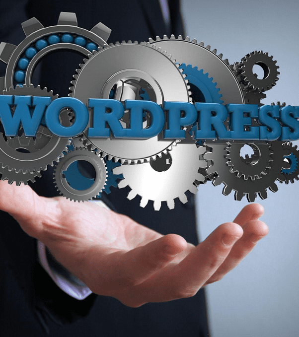 WordPress accounts for over 35% of the entire websites on the web as it is the most commonly used CMS in the world.