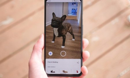 Google's AR animal farm now includes pigs, milk cows, and more
