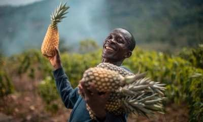 AgroCenta raises $790k pre-Series A funding To Boost Its Agric-tech Ecosystem