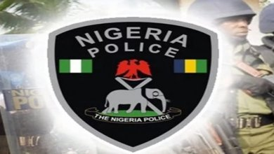 Photo of Nigerian Police Ranks, Badges and Salaries