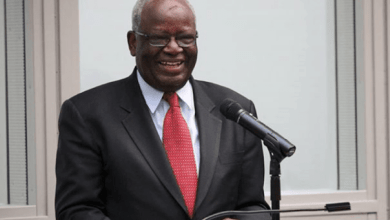 Photo of BREAKING NEWS: President Buhari appoints Prof. Gambari as new Chief of Staff