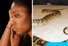 Photo of Fiction: How I Was Married To A Man For 2 Years Without Knowing That He Was A Snake