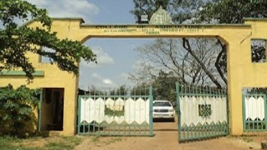 Bill to upgrade Kabba Agric School to University scales second reading in Senate