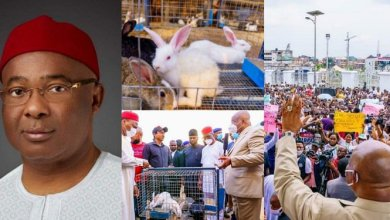 Imo State Governor Empowers Unemployed Youths With Rabbits (Photos)