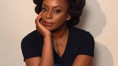 Igbo people can?t unite for presidency yet talk about Biafra - Chimamanda Adichie