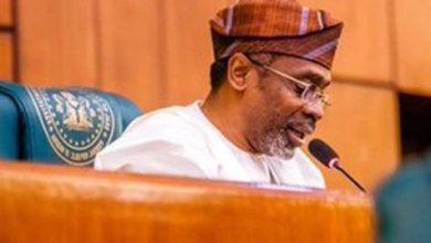 We'll work with President to protect Nigerians in South Africa —Gbajabiamila